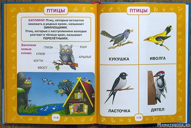 pervyi-uchebnik-malysha-3