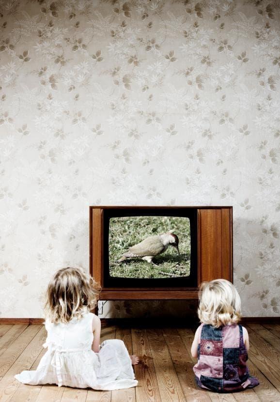 rebehok-televizor-skolko-vremeny-vred