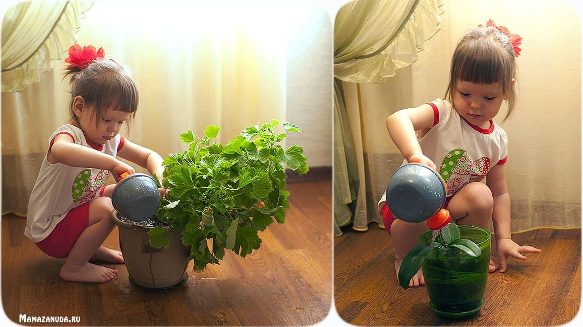 Яна-цветочница