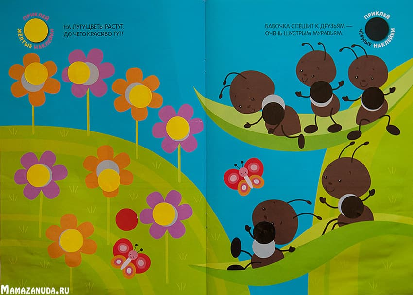 podbery-krujochky-po-cvetu-1