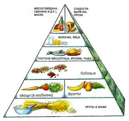 piramida-pitaniya-1